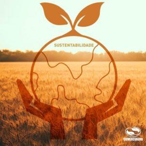 Sustentabilidade e agricultura devem andar juntas
