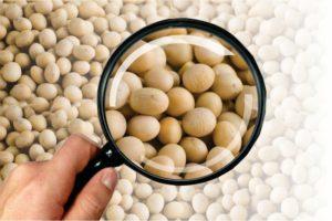 Embrapa destaca 22 dicas sobre cuidados com as sementes de soja